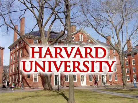 Harvard University is one of the schools that offers High School students a chance to experience early college life.