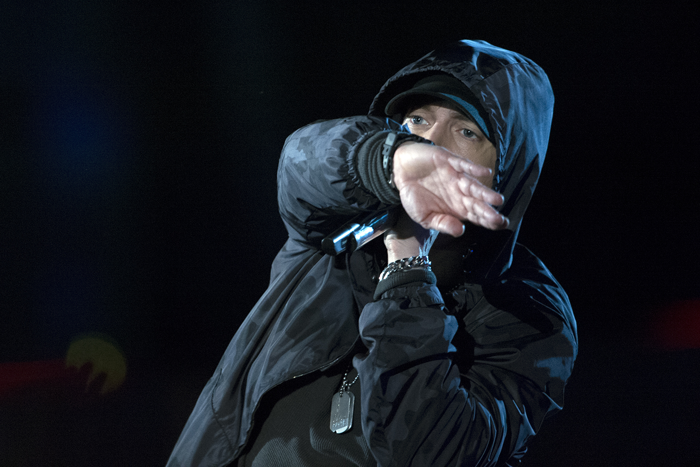 Eminem performs at the Concert for Valor, and is among the artists who criticize Trump.