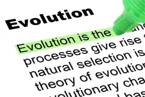 Evolution Should Be Taught in Public Schools