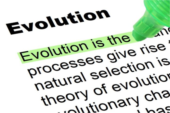 Some believe that the topic of evolution contradicts teachings in the bible.