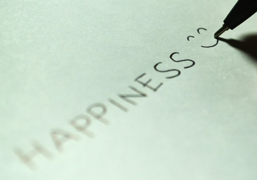 What happiness really is