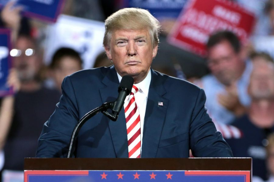 Since his campaign in 2016, President Donald Trump has spoken of plans to curb illegal immigration by building a wall.