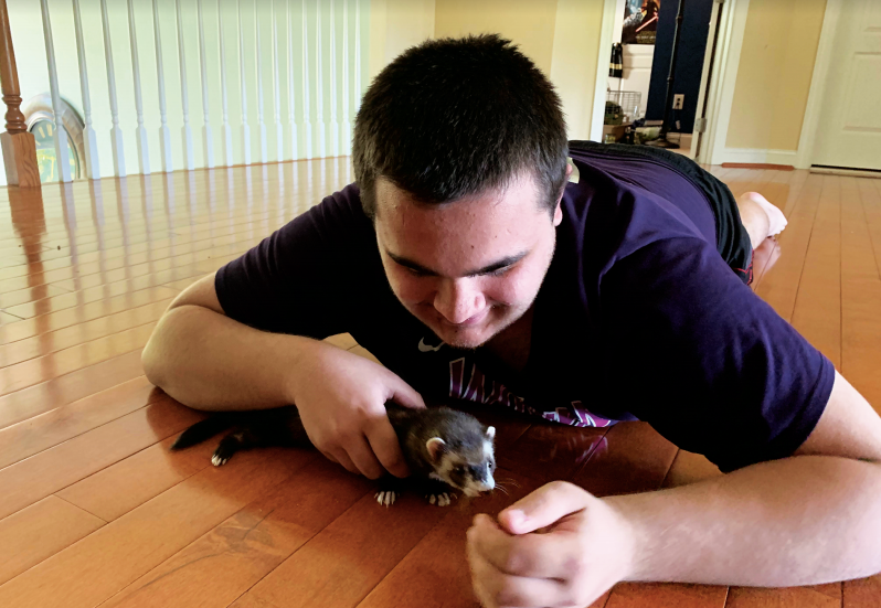 Franzen plays with his ferret Carly in his home.