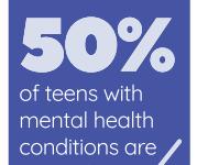 CHS raises concerns about mental health resources